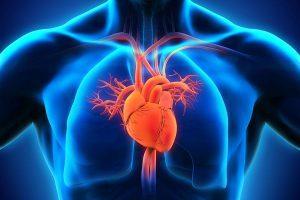 healthroom heart disease