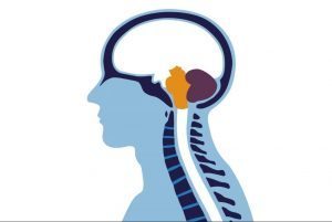 healthroom brain and and spine disease